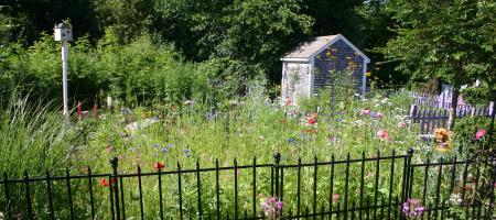 ProvGardener is Tending a Garden the Size of Rhode Island